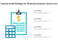 Internal Audit Strategy For Financial Analysis Vector Icon Ppt PowerPoint Presentation Outline Rules PDF