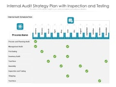 Internal Audit Strategy Plan With Inspection And Testing Ppt PowerPoint Presentation Infographics Portrait PDF