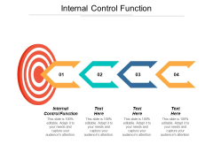 Internal Control Function Ppt Powerpoint Presentation Layouts Design Ideas Cpb