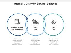 Internal Customer Service Statistics Ppt PowerPoint Presentation Portfolio Graphic Images Cpb