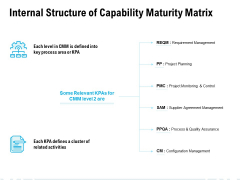 Internal Structure Of Capability Maturity Matrix Ppt PowerPoint Presentation File Background Designs