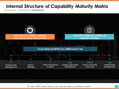 Internal Structure Of Capability Maturity Matrix Ppt PowerPoint Presentation Professional Designs Download