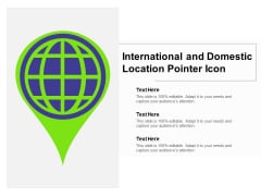 International And Domestic Location Pointer Icon Ppt PowerPoint Presentation Ideas Shapes PDF