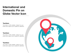 International And Domestic Pin On Globe Vector Icon Ppt PowerPoint Presentation File Graphics Tutorials PDF