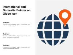 International And Domestic Pointer On Globe Icon Ppt PowerPoint Presentation Summary Layout PDF
