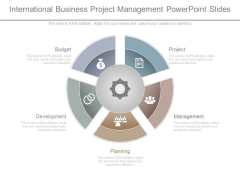 International Business Project Management Powerpoint Slides