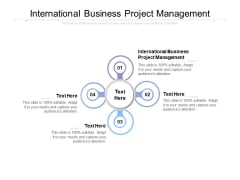 International Business Project Management Ppt PowerPoint Presentation Summary Templates Cpb