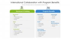 International Collaboration With Program Benefits Icons PDF