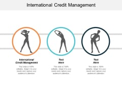 International Credit Management Ppt PowerPoint Presentation Ideas Information Cpb