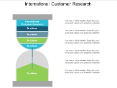 International Customer Research Ppt Powerpoint Presentation Ideas Example Cpb