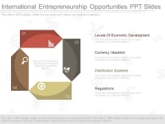 International Entrepreneurship Opportunities Ppt Slides