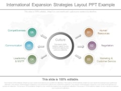 International Expansion Strategies Layout Ppt Example