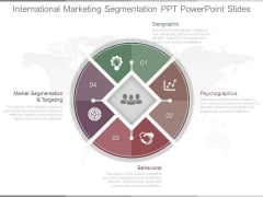 International Marketing Segmentation Ppt Powerpoint Slides