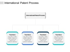 International Patent Process Ppt PowerPoint Presentation Styles Example Cpb