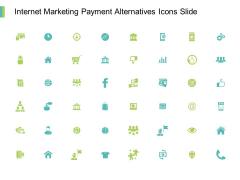 Internet Marketing Payment Alternatives Icons Slide Storage Ppt PowerPoint Presentation Show Icon
