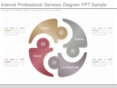 Internet Professional Services Diagram Ppt Sample