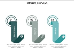 Internet Surveys Ppt PowerPoint Presentation Outline Cpb