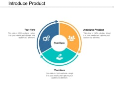 Introduce Product Ppt PowerPoint Presentation Files Cpb