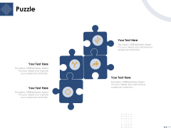 Introducing And Implementing Data Migration Approaches Within The Business Puzzle Ppt Icon Format Ideas PDF