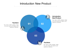 Introduction New Product Ppt PowerPoint Presentation Summary Layout Cpb