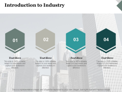 Introduction To Industry Ppt PowerPoint Presentation Outline Graphics Template
