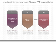 Investment Management Issue Diagram Ppt Images Gallery
