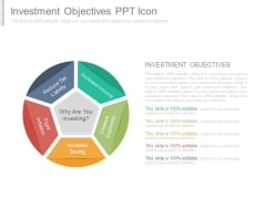 Investment Objectives Ppt Icon