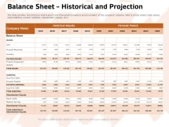 Investor Deck For Capital Generation From Substitute Funding Options Balance Sheet Historical And Projection Formats PDF