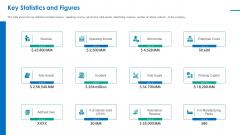Investor Pitch Deck For Short Term Bridge Loan Key Statistics And Figures Revenue Ppt PowerPoint Presentation Ideas Visual Aids PDF