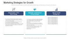 Investor Pitch Deck To Procure Federal Debt From Banks Marketing Strategies For Growth Ppt Professional Guidelines PDF