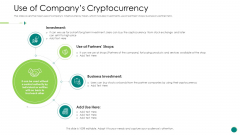 Investor Pitch Gain Funding From ICO Use Of Companys Cryptocurrency Ideas PDF