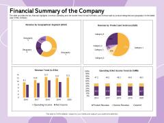 Investor Presentation For Society Funding Financial Summary Of The Company Inspiration PDF