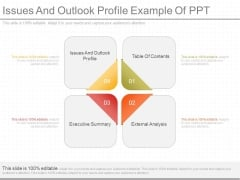 Issues And Outlook Profile Example Of Ppt