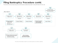 Issues Which Leads To Insolvency Filing Bankruptcy Procedure Contd Summary PDF