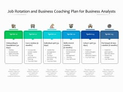 Job Rotation And Business Coaching Plan For Business Analysts Ppt PowerPoint Presentation Icon Example File PDF