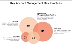 Key Account Management Best Practices Ppt PowerPoint Presentation Portfolio File Formats Cpb