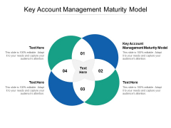 Key Account Management Maturity Model Ppt PowerPoint Presentation Show File Formats Cpb