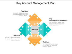 Key Account Management Plan Ppt PowerPoint Presentation Summary Styles Cpb