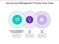Key Account Management Process Flow Chart Ppt PowerPoint Presentation File Infographic Template Cpb