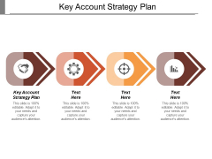 Key Account Strategy Plan Ppt Powerpoint Presentation Portfolio Information Cpb