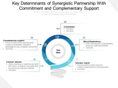 Key Determinants Of Synergistic Partnership With Commitment And Complementary Support Ppt PowerPoint Presentation File Gallery PDF