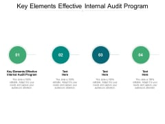 Key Elements Effective Internal Audit Program Ppt PowerPoint Presentation Show Guidelines Cpb