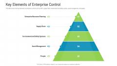 Key Elements Of Enterprise Control Structure PDF
