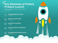 Key Elements Of Perfect Product Launch Ppt PowerPoint Presentation Slides Visuals PDF