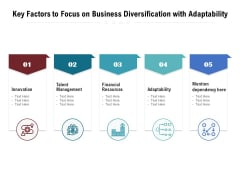 Key Factors To Focus On Business Diversification With Adaptability Ppt PowerPoint Presentation Summary Gallery PDF