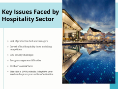 Key Issues Faced By Hospitality Sector Ppt PowerPoint Presentation Icon Example PDF