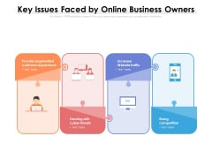 Key Issues Faced By Online Business Owners Ppt PowerPoint Presentation File Graphics Design PDF