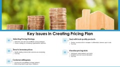 Key Issues In Creating Pricing Plan Ppt PowerPoint Presentation Icon Portfolio PDF