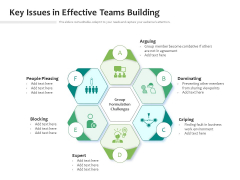 Key Issues In Effective Teams Building Ppt PowerPoint Presentation Gallery Portfolio PDF