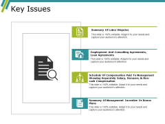 Key Issues Ppt PowerPoint Presentation Infographic Template Example File